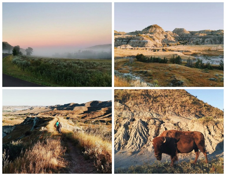 Theodore Roosevelt National Park was full of empty space, nature and bison.