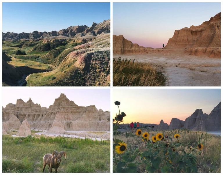 Badlands and sunflowers in South Dakota's Badlands National Park